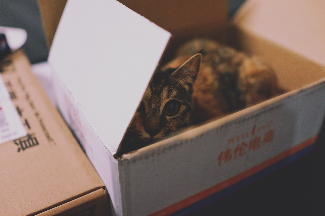 ¿Por qué es importante elegir bien las cajas embalaje para mudanzas?
